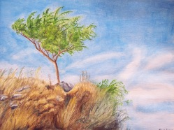 tree_by_step_into_the_sky